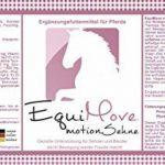 2boîtes equimove Tendon Plus (par 1,5kg)–Le paquet économique pour chevaux de unterstützenden füttterung dans tendinite, tendovaginite, dsld, fascia Problèmes Et Plus de la marque EquiMove image 1 produit
