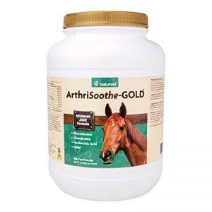 arthrite cheval TOP 1 image 0 produit