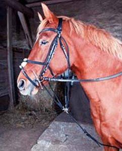 bride dressage cheval TOP 10 image 0 produit