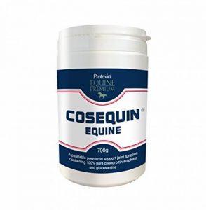 Cosequin Poudre Equine (700g) de la marque Cosequin image 0 produit