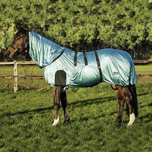 couverture eczéma cheval TOP 11 image 0 produit