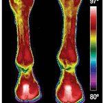 CRYOINNOV Evendura Enveloppe de Cryothérapie Mixte Adulte, Noir de la marque CRYOINNOV image 3 produit
