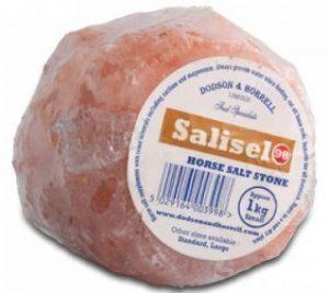 Dodson & horrell Salisel Cheval Pierre de sel, de la marque Dodson & horrell image 0 produit