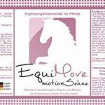 EquiMove Je une canette (1,5kg) Motion Tendon &amp Motion musculaire–offre le Combi pour votre cheval. La combinaison idéale pour problèmes de Tendons Et Les muscles de la marque EquiMove image 5 produit
