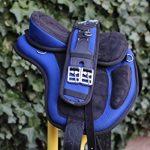Equipride enfant Selle sans arçon 30,5cm Plus assorti Tour de poitrine Noir avec Bleu roi de la marque Equipride image 4 produit