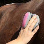 Eurohorseline Oster - 78399-325 - Set de soins pour chevaux - 7 pièces - Rose de la marque Oster image 3 produit