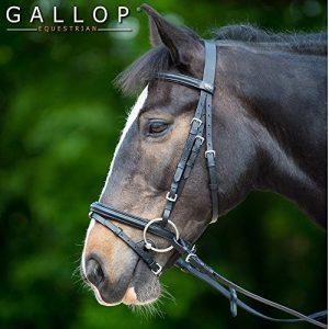 Gallop bride rembourrée et rênes en caoutchouc, Marron Cob de la marque Gallop image 0 produit
