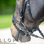 Gallop bride rembourrée et rênes en caoutchouc, Marron Cob de la marque Gallop image 2 produit