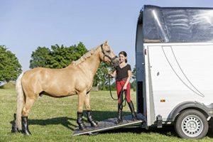 guêtre de transport cheval TOP 11 image 0 produit