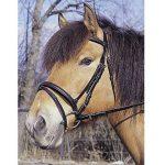 Kerbl Bridon Standard pour Cheval de Selle Brun de la marque Kerbl image 2 produit