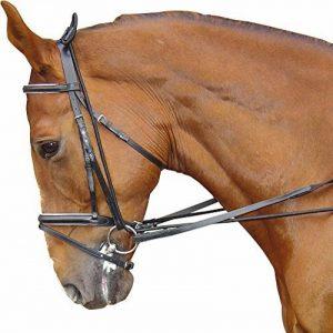 élastique enrênement cheval TOP 3 image 0 produit