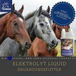 Électrolyte Liquid–Puissance obtention de acheter en ligne 1L-pferdefuttershop. Emma de de la marque EMMA image 4 produit