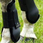 norton équipement cheval TOP 1 image 1 produit
