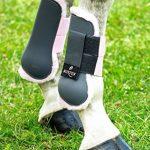 norton équipement cheval TOP 3 image 1 produit