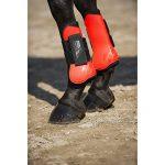 norton équipement cheval TOP 9 image 1 produit