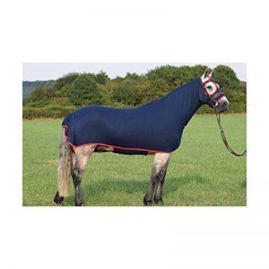 Nylon Lycra Corps Entièrement Cheval Coque pour Montrer, DE DRESSAGE et chevaux de concours complet d'équitation–The Honsie–Ultra Violet (Petite (12.1hh au 14.2hh)) de la marque Belvoir image 0 produit