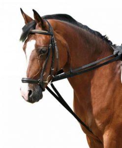 PFIFF 004239-60-Pony Rênes allemandes en toile Poney de la marque PFIFF image 0 produit
