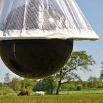 Piège à taons VOSS.farming « HorseFriend » de la marque Voss.farming image 2 produit