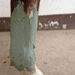 Poudre Armoricaine pour Chevaux Cataplasme Detox Anti Douleurs Argile & Algues Marines - A préparer, seaux de 1500 g poudre- produit en Bretagne, Côte d'Armor de la marque bleumarine Bretania image 2 produit