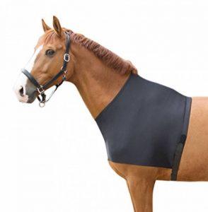 protection encolure cheval TOP 0 image 0 produit
