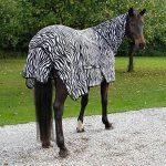 protection encolure cheval TOP 3 image 2 produit