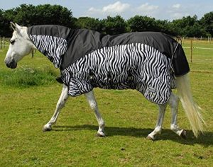 protection taille poney TOP 11 image 0 produit