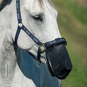 protège mouche cheval TOP 3 image 0 produit