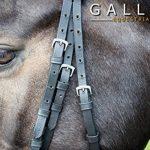 équitation rênes TOP 13 image 1 produit