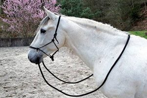 rênes cheval TOP 8 image 0 produit