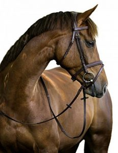 selle point cheval TOP 2 image 0 produit