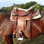 "'Selle western esposita Set ""Texas avec mors et bricole de la marque Esposita image 1 produit"