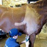 Set de Peignes Standard A2 Pour Chevaux Li-A 2 Lames Cisaillement Équin Découpage de Cheval et Parage - Liscop Liveryman Wolseley de la marque Hunters image 3 produit