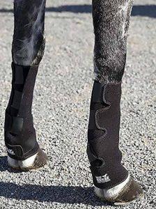 traitement tendinite cheval TOP 10 image 0 produit