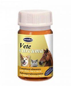 Vetecurcuma pour chiens, chats & Chevaux de la marque Phytomisan image 0 produit