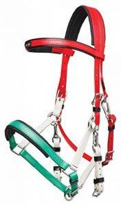 zilco Marathon Bride–Arabe Rouge/Blanc/Vert de la marque ZILCO image 0 produit