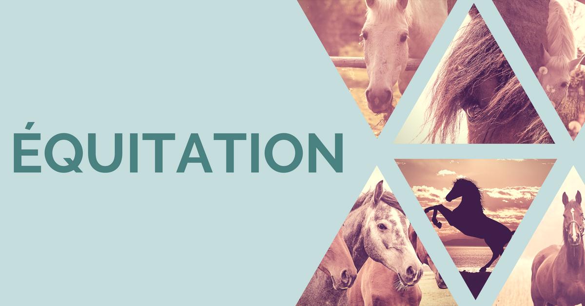 Mon Equitation